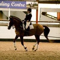Becky - Becks Back in the Saddle
